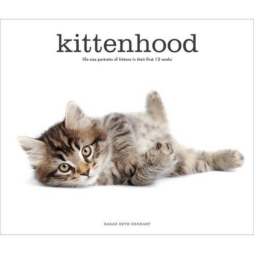 Stewart Tabori & Chang Books Kittenhood