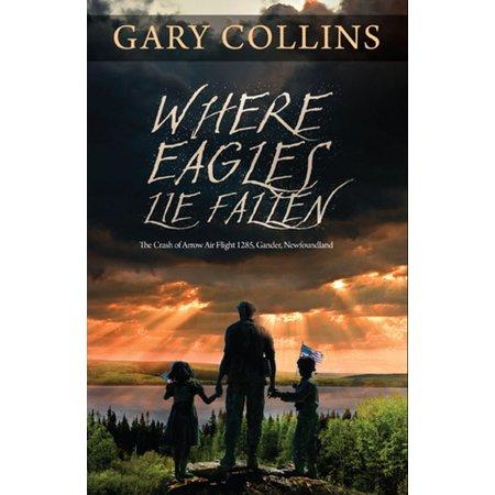 Where Eagles Lie Fallen: The Crash of Arrow Air Flight 1285 Gander Newfoundland - eBook