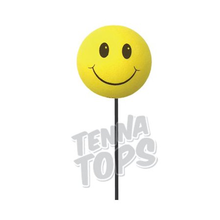 recipe: car antenna toppers walmart [7]