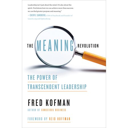 The Meaning Revolution : The Power of Transcendent (Narrative Leadership Using The Power Of Stories)