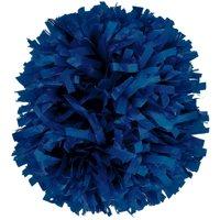 1 In-Stock Plastic Cheerleading Pom (Sold Individually)