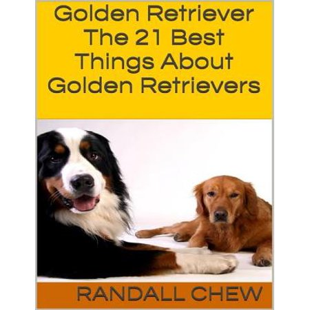 Golden Retriever: The 21 Best Things About Golden Retrievers - (Best Looking Golden Retriever)