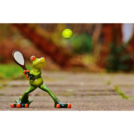 Tennis Frog (LAMINATED POSTER Fun Fig Frog Cute Tennis Funny Sweet Poster Print 24 x)