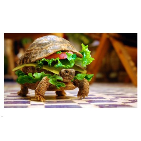 Hilarious Turtle Burger Walking On Table Poster 24X36 Funny Cute Unique!