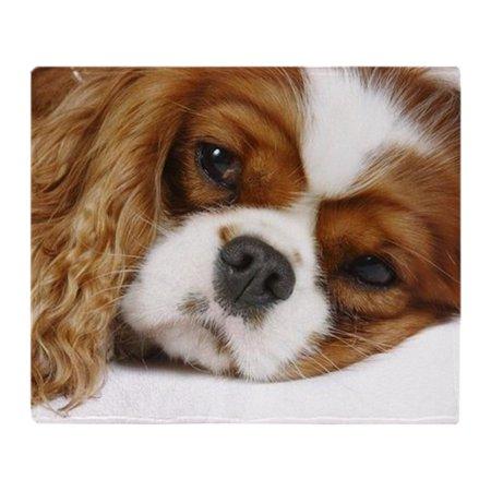 Tri Cavalier King Charles Spaniel - CafePress - Cavalier King Charles Spaniel - Soft Fleece Throw Blanket, 50