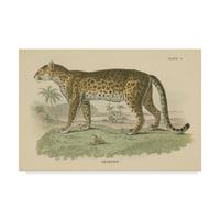 Trademark Fine Art 'Vintage Leopard' Canvas Art by Wild Apple Portfolio