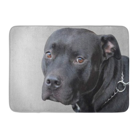 Neutral Block (GODPOK American Brown Bull Black Pitbull on Neutral Gray Pit Terrier Rug Doormat Bath Mat 23.6x15.7 inch )