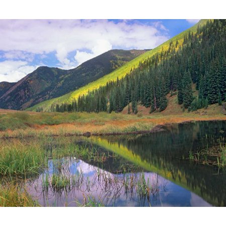 Pond and mountains Maroon Bells-Snowmass Wilderness Area Colorado Poster Print by Tim Fitzharris