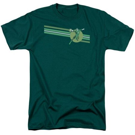 Dc-Lantern Stripe - Short Sleeve Adult 18-1 Tee - Hunter Green, 3X - image 1 of 1