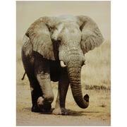 "Oriental Furniture Walking Elephant Canvas Wall Art, 31.5""H x 23.5""W, wall décor, wall art, wall hanging"