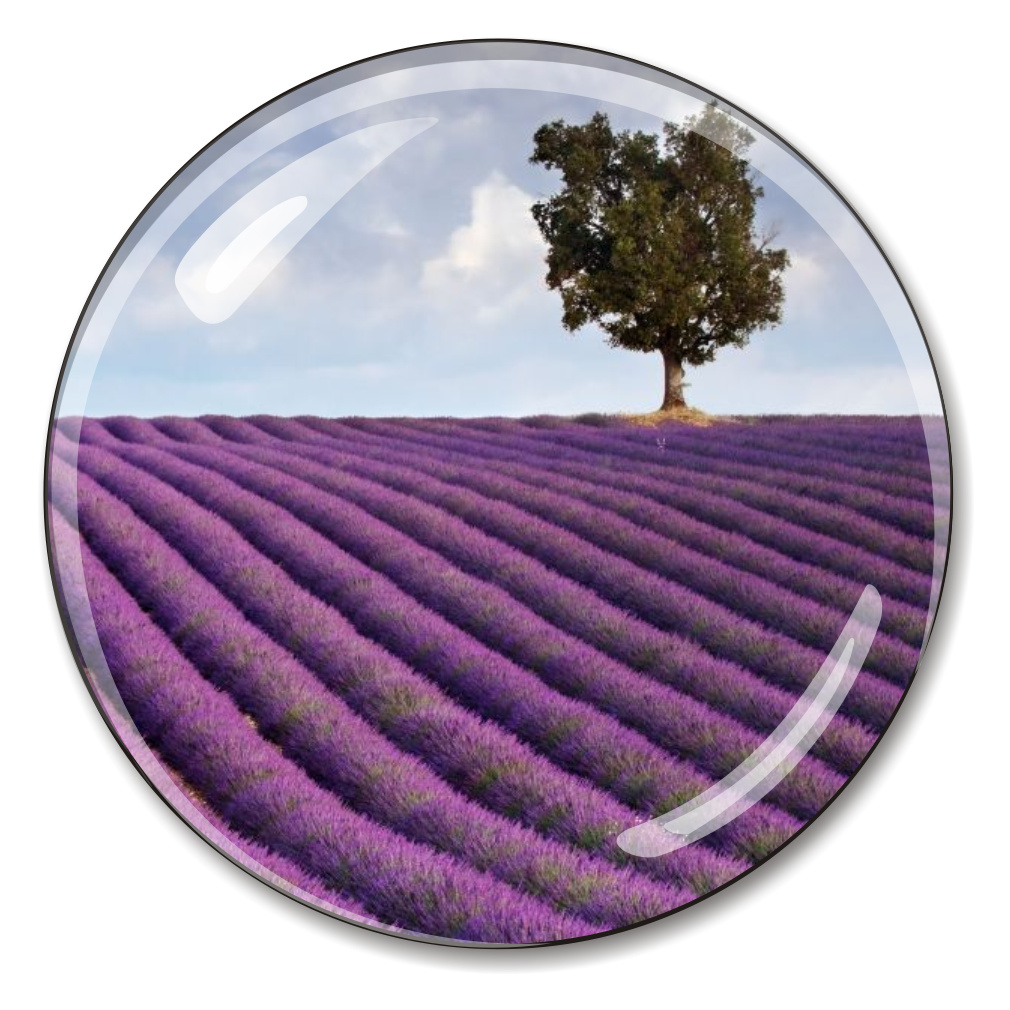 Provence French Crystal Paperweight