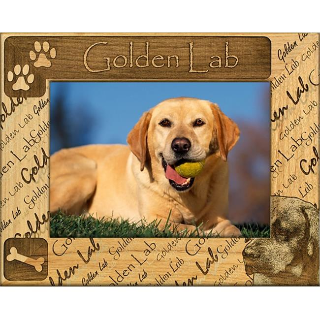 Giftworks Plus DBA0085 Golden Lab, Alder Wood Frame, 8 x 10 In