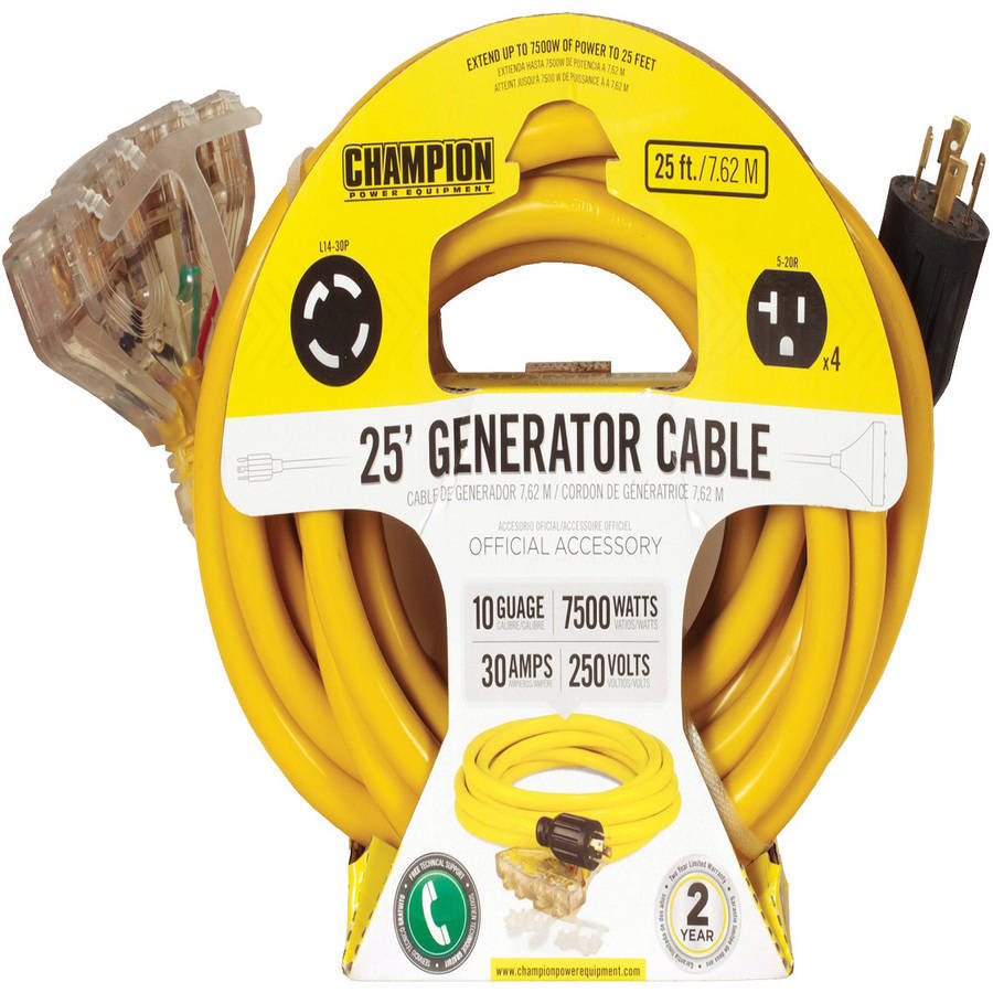Champion Power Equipment Model 48036,  25 ft. Portable Generator Cord 240V