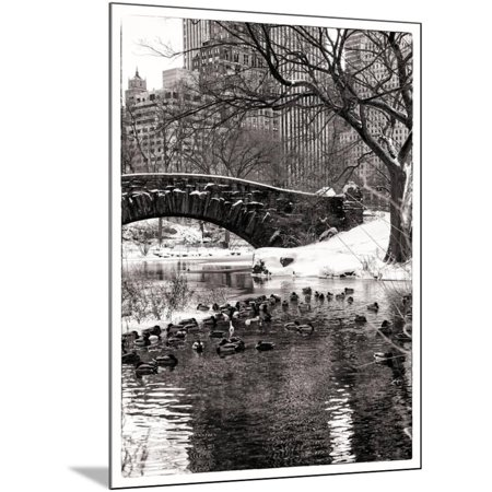 The Gapstow Bridge of Central Park in Winter, Manhattan in New York City Wood Mounted Print Wall Art By Philippe Hugonnard - Halloween City Winter Park