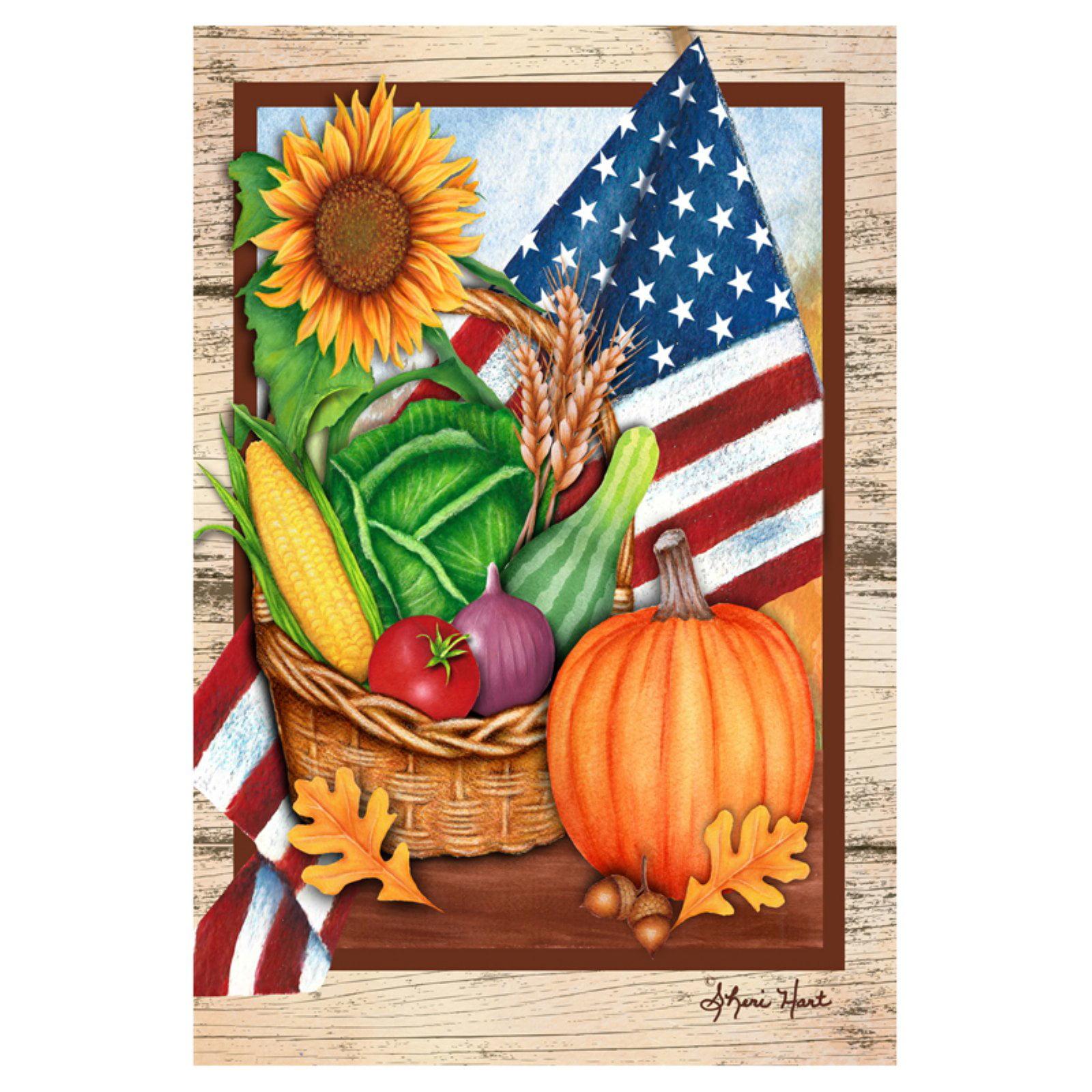 Toland Home Garden American Harvest Flag