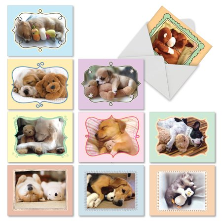 M6469OCB CUDDLE BUDDIES' 10 Assorted All Occasions Cards Featuring Sweet and Adorable Sleeping Puppies Cuddling With Their Favorite Stuffed Animals with Envelopes by The Best Card