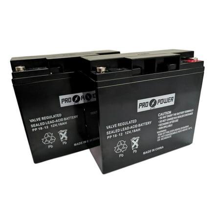 2  Pro Power 12V 18Ah For