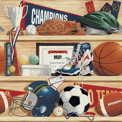 Blue Mountain Sports Wallcovering, Shelves Filled with Sports Equipment