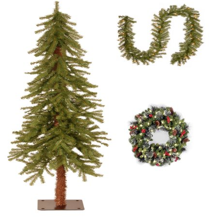 5' Hickory Cedar Tree with 9' x 10