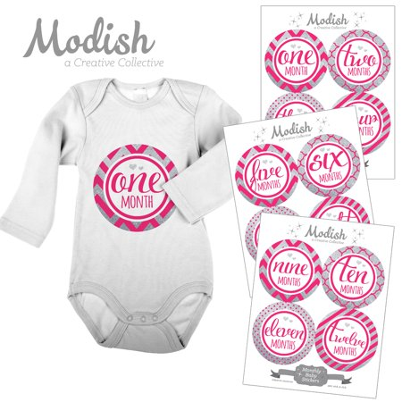 Modish Monthly Baby Stickers, Girl, Pink, Silver, Chevron, Stripes, Baby Photo Prop, Baby Shower Gift, Baby Book Keepsake