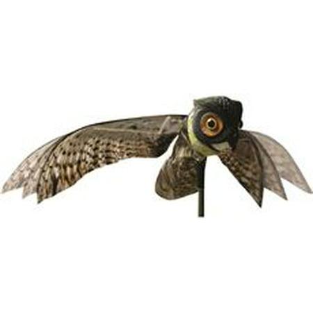 Bird X Prowler Owl - Owl Eagle Owl