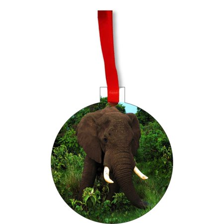 Ornament Elephant African Elephant in the Jungle Round Shaped Flat Hardboard Christmas Ornament Tree Decoration - Unique Modern Novelty Tree Décor Favors - Jungle Tree Decorations