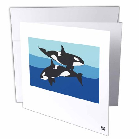 3dRose Two Killer Whales ( Orcinus Orca ) without caption, Greeting Cards, 6 x 6 inches, set of 12