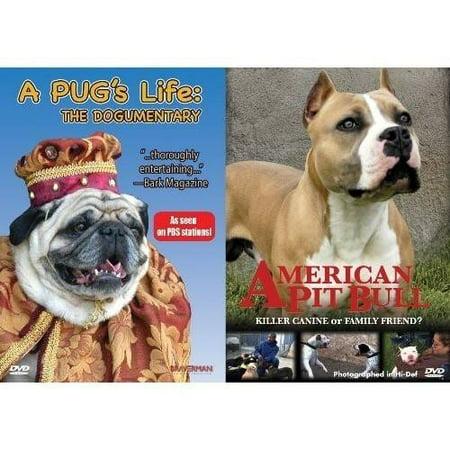 Pug's Life/American Pit Bull