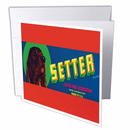 3dRose Setter Brand Exeter Fruit wit Irish Setter Colorful Crate Label, Greeting Cards, 6 x 6 inches, set of 6