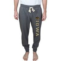 Iowa Hawkeyes Splitter Jersey Cuffed Pants - Gray
