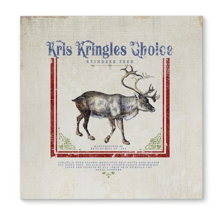 The Holiday Aisle 'Reindeer Feed' Textual Art on Canvas - Reindeer Feed