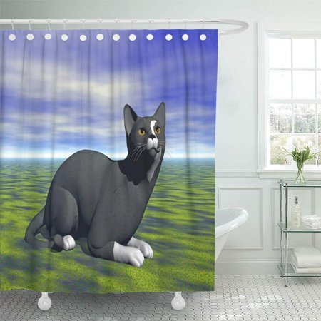 SUTTOM Rabbit Cuddly Tomcats 3D Rendering Bunny Cats Claws Shower Curtain 60x72 inch - image 1 de 1