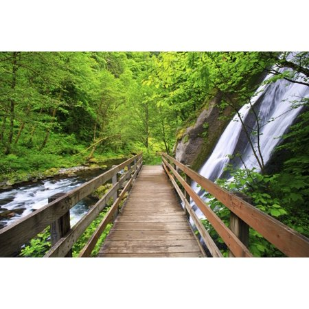 - Small Waterfall Along Tanner Creek In Columbia River Gorge National Scenic Area In The Pacific Northwest Oregon United States of America Stretched Canvas - Craig Tuttle  Design Pics (19 x 12)