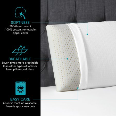 Beautyrest Latex Pillow with Removable Cover in Multiple Sizes
