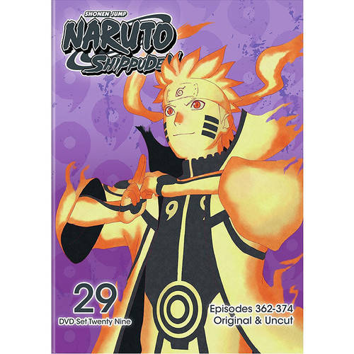 Naruto Shippuden: Box Set 29 (DVD)