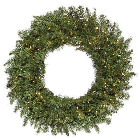24 in. Carlsbad Fir Green Wreath with 3 mm & 150 Warm White Light - image 1 de 1