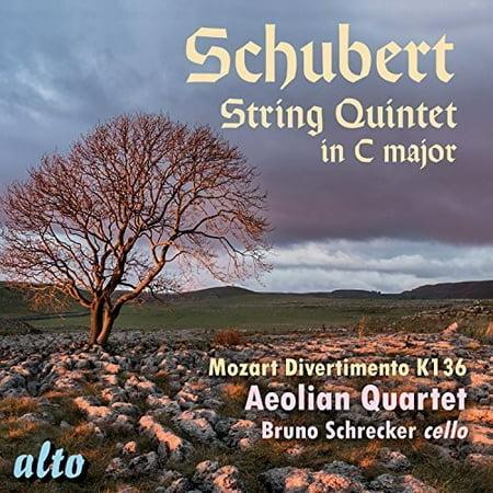 String Quintet in C Major / Divertimento in D (Schubert String Quintet In C Major 2nd Movement)