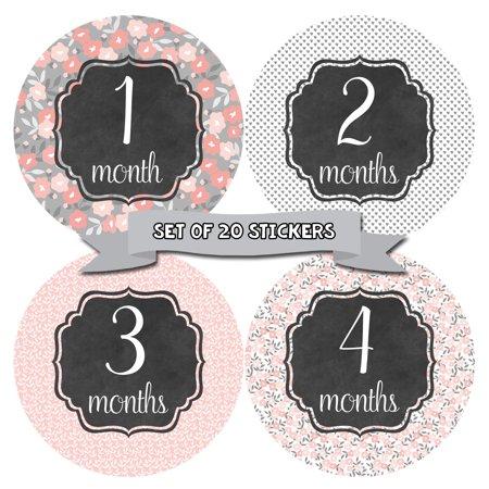 Girl Sticker Set (Baby Monthly Milestone Stickers - First Year Set of Baby Girl Month Stickers for Photo Keepsakes - Shower Gift - Set of 20 - Floral Shabby)