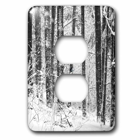 3dRose Winter Snow black and white photograph of Michigan pine forest covering in snow - 2 Plug Outlet Cover (Outlet Mall In Michigan)