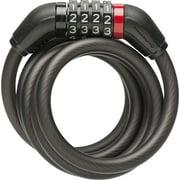 Blackburn 5 ft. x 10mm Combo Cable Lock
