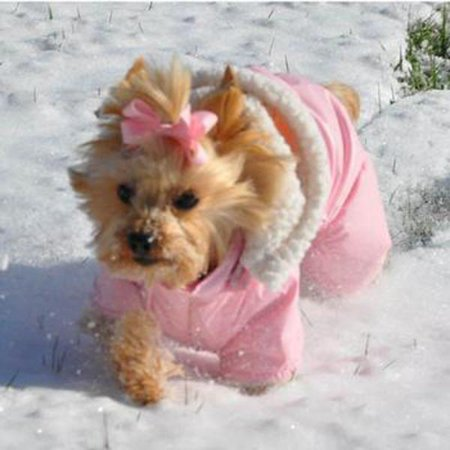 Dog Coat - Ruffin' It Snowsuit - Pink - Small (S) (Body Suit For Dogs)