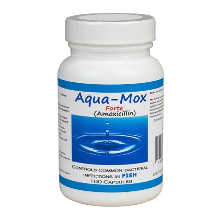 Upc 748252267511 aqua mox forte 500 mg amoxicillin fish for Fish antibiotics walmart