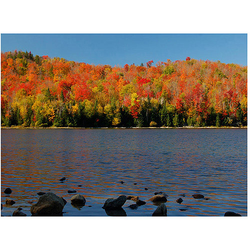 "Trademark Art ""The Adirondack Heart Lake"" Canvas Wall Art by Nicole Dietz"