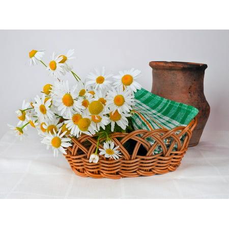 LAMINATED POSTER Jug Clay Daisies Basket Weaving Old Pot Poster Print 24 x 36 (Clay Jug)