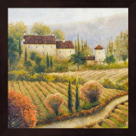 Tuscany Vineyard I by Michael Marcon, Framed Wall Art, 13.25W x ...