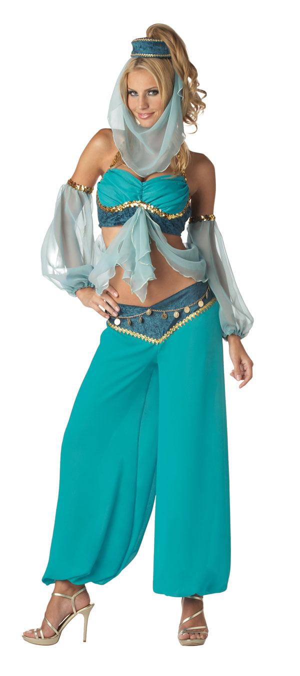 sc 1 st  Walmart & Premium Harems Jewel Belly Dancer Adult Costume - Walmart.com