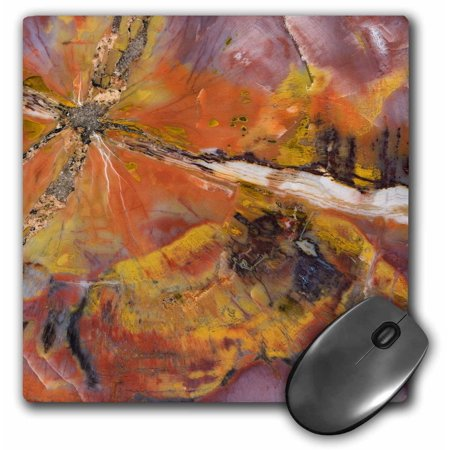 3dRose USA, Arizona. Abstract of petrified wood - US02 BJA0269 - Jaynes Gallery, Mouse Pad, 8 by 8 inches