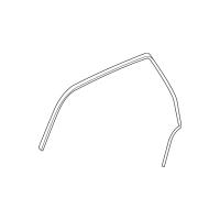 Genuine OE GM Drip Weather-Strip 20789464