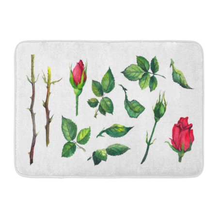 GODPOK Blossom Watercolour of Leaves Buds Stems Red Rose Flower Watercolor Botanical White Bloom Botanic Rug Doormat Bath Mat 23.6x15.7 inch ()