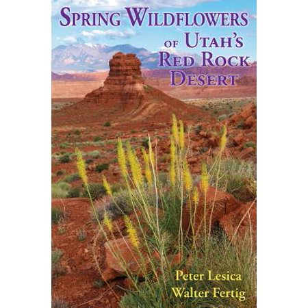 Desert Rock - Spring Wildflowers of Utah's Red Rock Desert